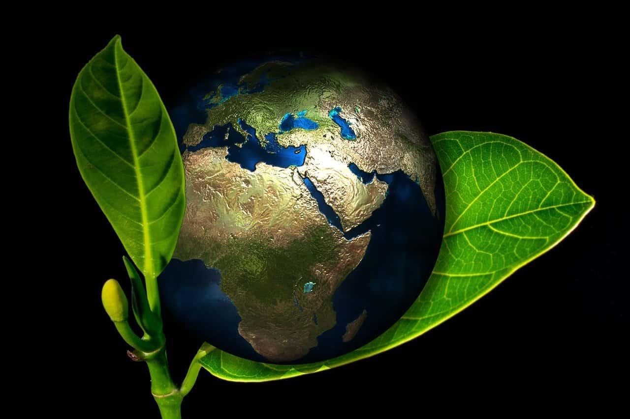 Earth Image 2 obboymedia | অব্যয় মিডিয়া